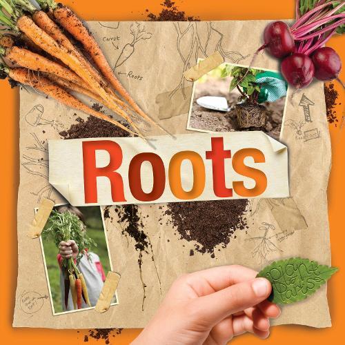 Roots (Hardback)