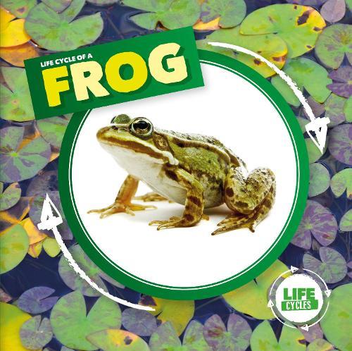 Life Cycle of a Frog - Life Cycles (Hardback)