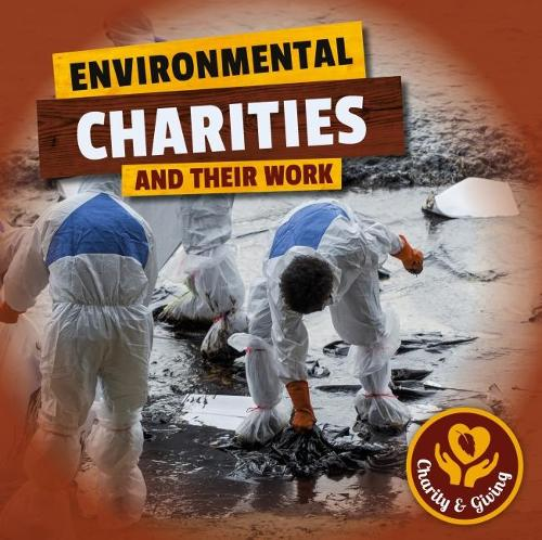 Environmental Charities - Charity & Giving (Hardback)