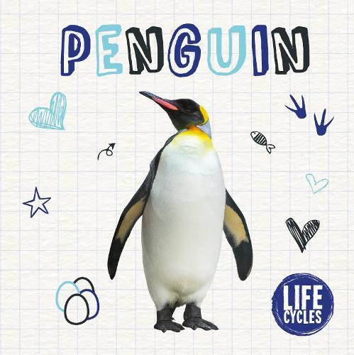 Penguin - Life Cycles (Hardback)