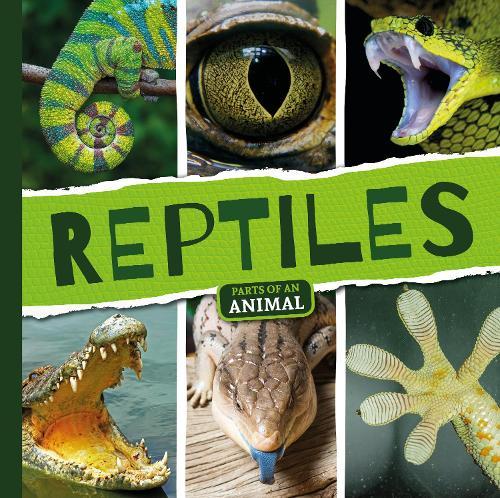 Reptiles - Parts of an Animal (Hardback)