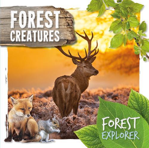 Forest Creatures - Forest Explorer (Hardback)