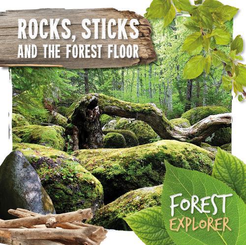 Rocks, Sticks & the Forest Floor - Forest Explorer (Hardback)