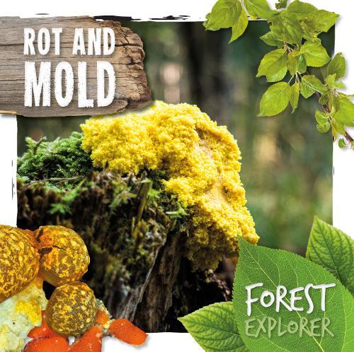 Rot & Mould - Forest Explorer (Hardback)