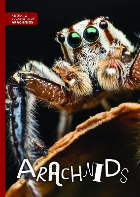 Arachnids - Animal Classification (Hardback)