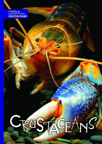 Crustaceans - Animal Classification (Hardback)