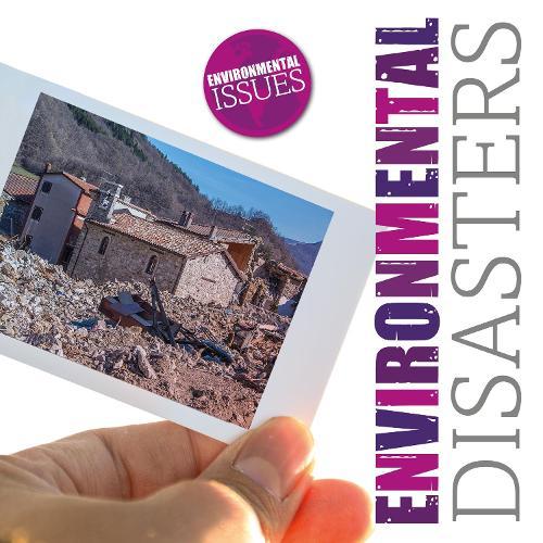 Environmental Disasters - Environmental Issues (Hardback)