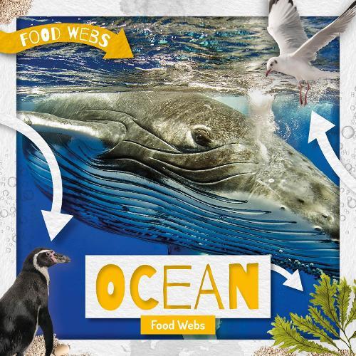 Ocean Food Webs - Food Webs (Hardback)