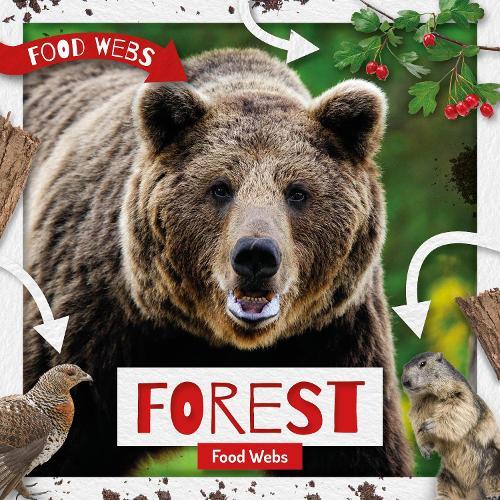 Forest Food Webs - Food Webs (Hardback)