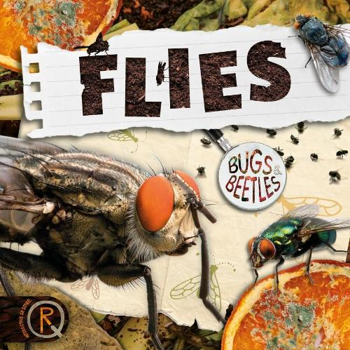 Flies - Bugs and Beetles (Hardback)