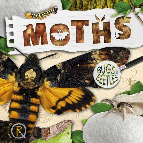 Moths - Bugs and Beetles (Hardback)