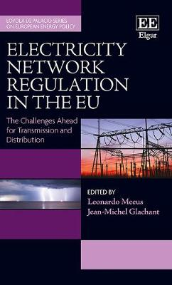 Electricity Network Regulation in the Eu: The Challenges Ahead  for Transmission and Distribution - Loyola De Palacio Series on European Energy Policy (Hardback)