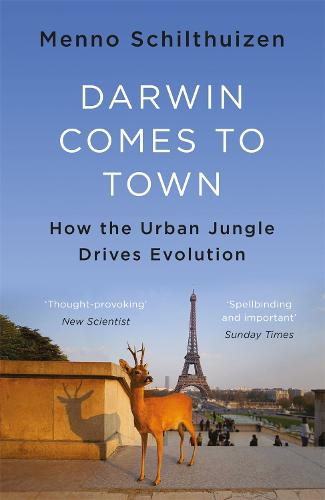 Darwin Comes to Town (Paperback)