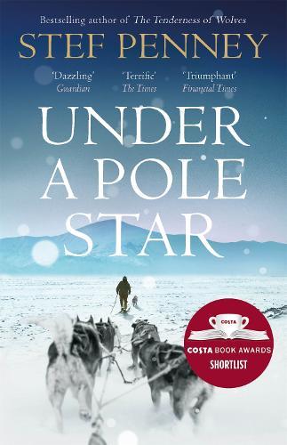 Under A Pole Star (Paperback)