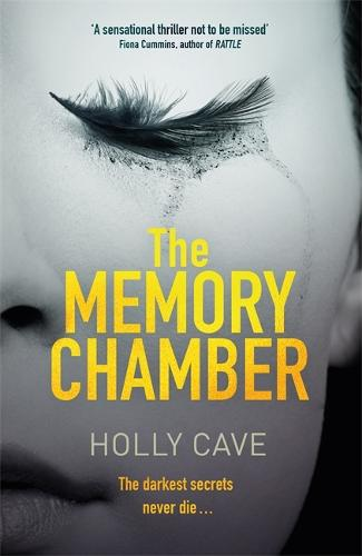 The Memory Chamber (Hardback)