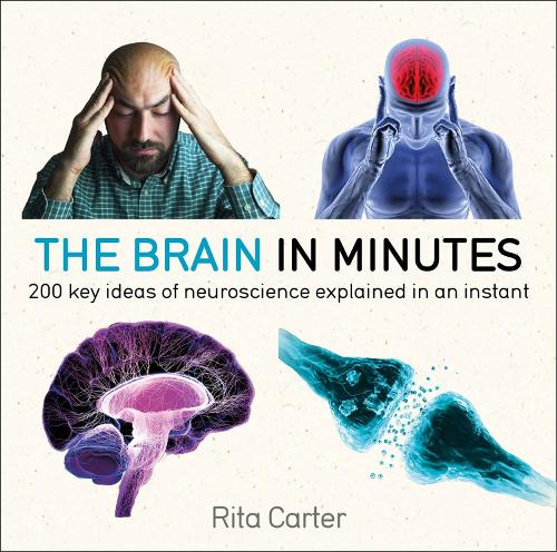 The Brain in Minutes - In Minutes (Paperback)