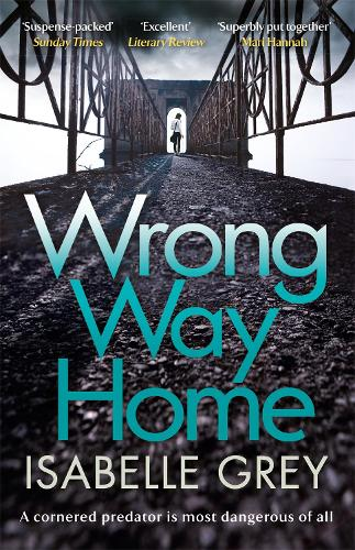 Wrong Way Home (Paperback)