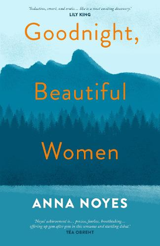 Goodnight, Beautiful Women: a powerful collection of short stories about the women of a small town in Maine (Hardback)