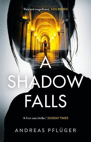 A Shadow Falls - A Jenny Aaron Thriller 2 (Hardback)