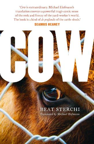 Cow (Paperback)