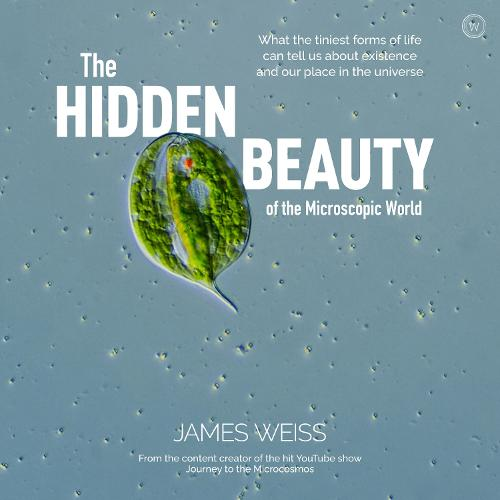 The Hidden Beauty of the Microscopic World: What the tiniest forms of life can tell us about existence and our place in the universe (Hardback)