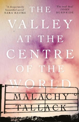 The Valley at the Centre of the World (Paperback)