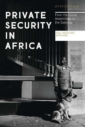 Private Security in Africa: From the Global Assemblage to the Everyday - Africa Now (Paperback)