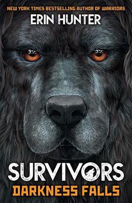 Survivors Book 3: Darkness Falls - Survivors 3 (Paperback)