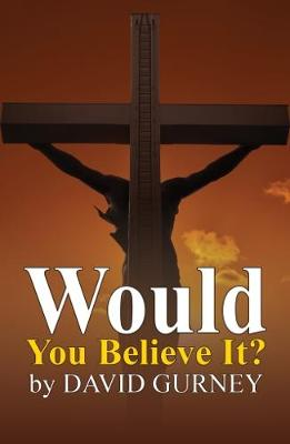 Would You Believe It? (Paperback)