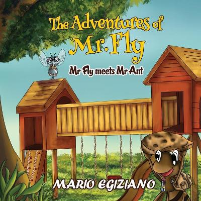 The Adventures of Mr. Fly -: Mr Fly Meets Mr Ant (Paperback)