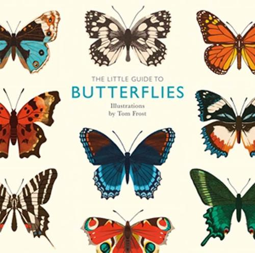 The Little Guide to Butterflies - Little Guides (Hardback)