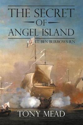 The Secret of Angel Island (Paperback)