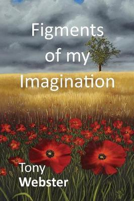 Figments of my Imagination (Paperback)
