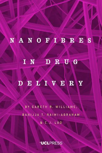 Nanofibres in Drug Delivery (Hardback)