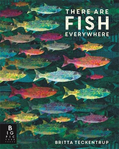 There are Fish Everywhere (Hardback)
