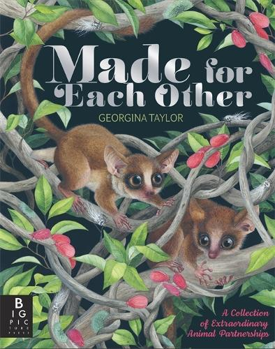 Made for Each Other (Hardback)