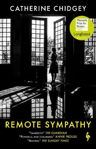 Remote Sympathy (Paperback)