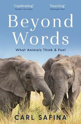 Beyond Words: What Animals Think and Feel (Paperback)