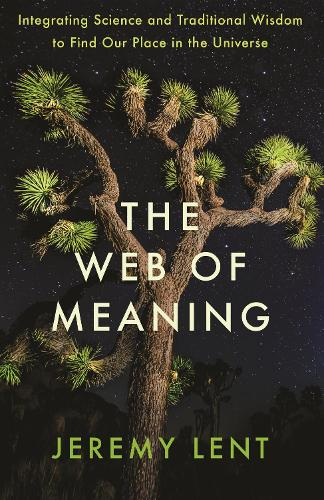 The Web of Meaning: Integrating Science and Traditional Wisdom to Find Our Place in the Universe (Hardback)