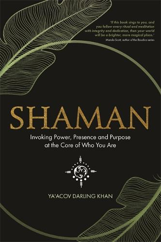 Shaman: Invoking Power, Presence and Purpose at the Core of Who You Are (Paperback)