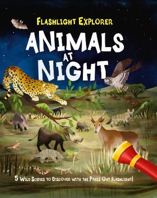 Flashlight Explorers: Animals at Night: 5 Magical Scenes to Discover with the Flashlight! (Hardback)