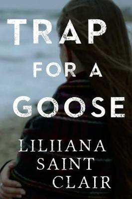 Trap for a Goose (Paperback)