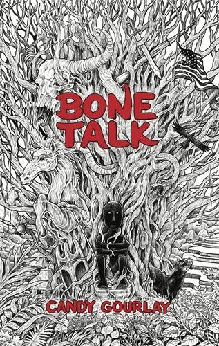 Cover of the book, Bone Talk.