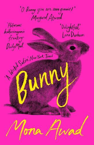 Image result for bunny mona awad