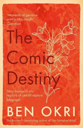 The Comic Destiny (Paperback)