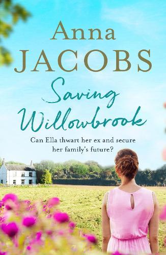Saving Willowbrook (Paperback)