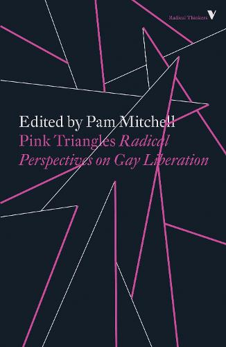 Pink Triangles: Radical Perspectives on Gay Liberation - Radical Thinkers (Paperback)