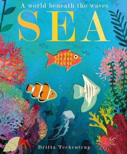 Sea: A World Beneath the Waves (Hardback)
