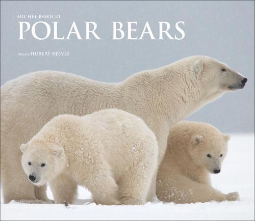 Polar Bears: A Life Under Threat (Hardback)