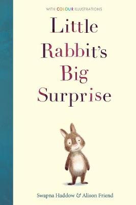 Little Rabbit's Big Surprise - Colour Fiction 1 (Hardback)